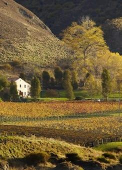 Gibston Valley Vinyards