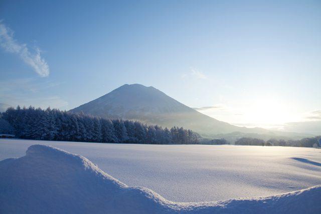 Niseko powder ski winter holiday