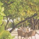 cocoa island maldives honeymoon resort beach restaurant