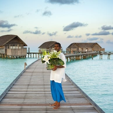 cocoa island maldives luxury resort by como