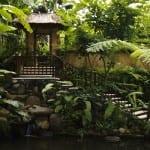 Tranquil Fish Pond COMO Uma Ubud Bali Indonesia Luxury Getaway Holiday Uniq Luxe