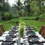 Dining over Paddy Fields Alila Ubud Bali Indonesia Holiday Getaway Luxury Uniq Luxe
