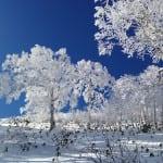 Tomamu resort hokkaido ski travel uniq luxe customised holiday
