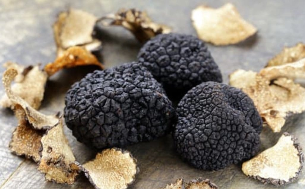 Rare black truffles