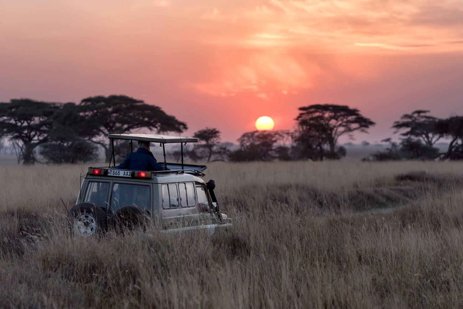 Venture into the African wilderness in a four-wheel drive!