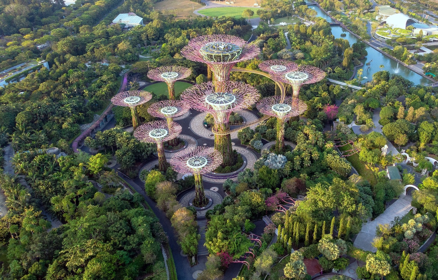 https://uluxeimages.uniqluxe.com/2020/10/gardens-by-the-bay-aerial-view-supertrees-singapore-luxury-travel-uniq-luxe.jpg