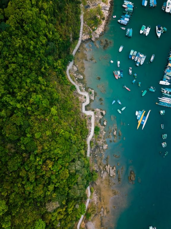 A spectacular aerial view of Hong Kong's greenery meeting the harbour filled with fishing boats of all sizes